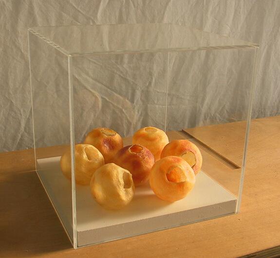 Acrylglas – Kunstgalerie-Abdeckung